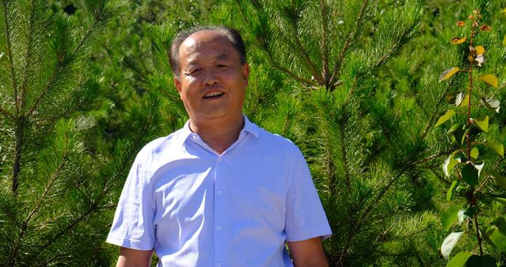 Zhang Junping as reported by China Daily, stands among the pine trees at Yuquan Mountain Forest Park on July 19, 2020 | Photo by Yang Xiaoyu / chinadaily.com.cn