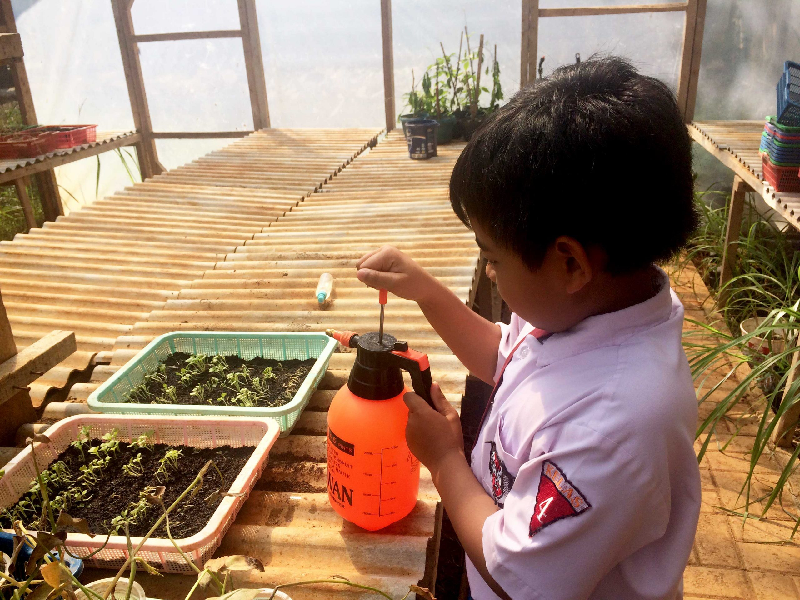 An elementary school student working on his seeding project | Photo: School of Global Madani